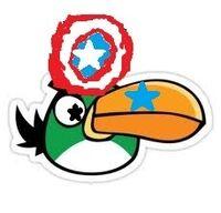 Boomerang Bird.jpg