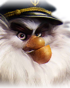 Capt'n Thrush