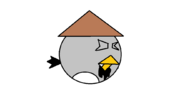 Sensei Bird