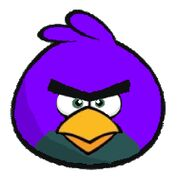 Purple Bird Angry3456