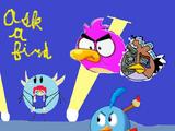 Ask a Bird (2023 Reboot)