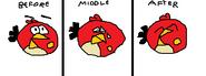 Redbird07 - Character3