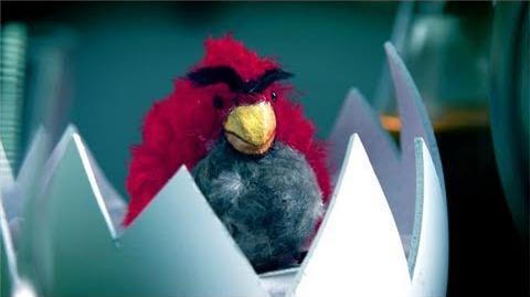 TheSponge231/New Angry Birds Movie 2015!!!