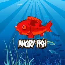 Angry Fish.jpg