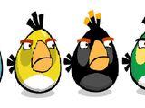 The Egg Beater Flock