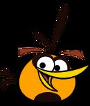 Orange Bird Eyes Closedhapp