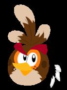 Brown-bird