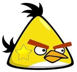 Star Bird.jpg
