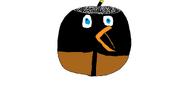 Ptak Finn
