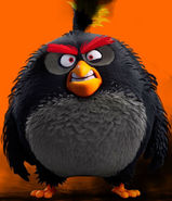 Angry Birds Evolution Bomb Exploded