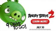 Angry Birds 2 - Faltam 9 Dias