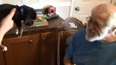 Angry Grandpa's New Puppy!