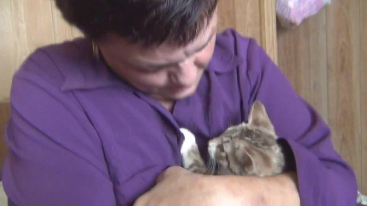 Grandma Gets a Cat!