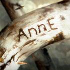 http://pl.ania-nie-anna.wikia