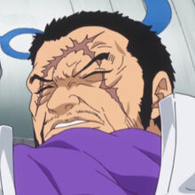 One-Piece-Fujitora-Issho-Anime-Screenshot.jpg
