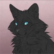 Tau's cat crator Rainswept