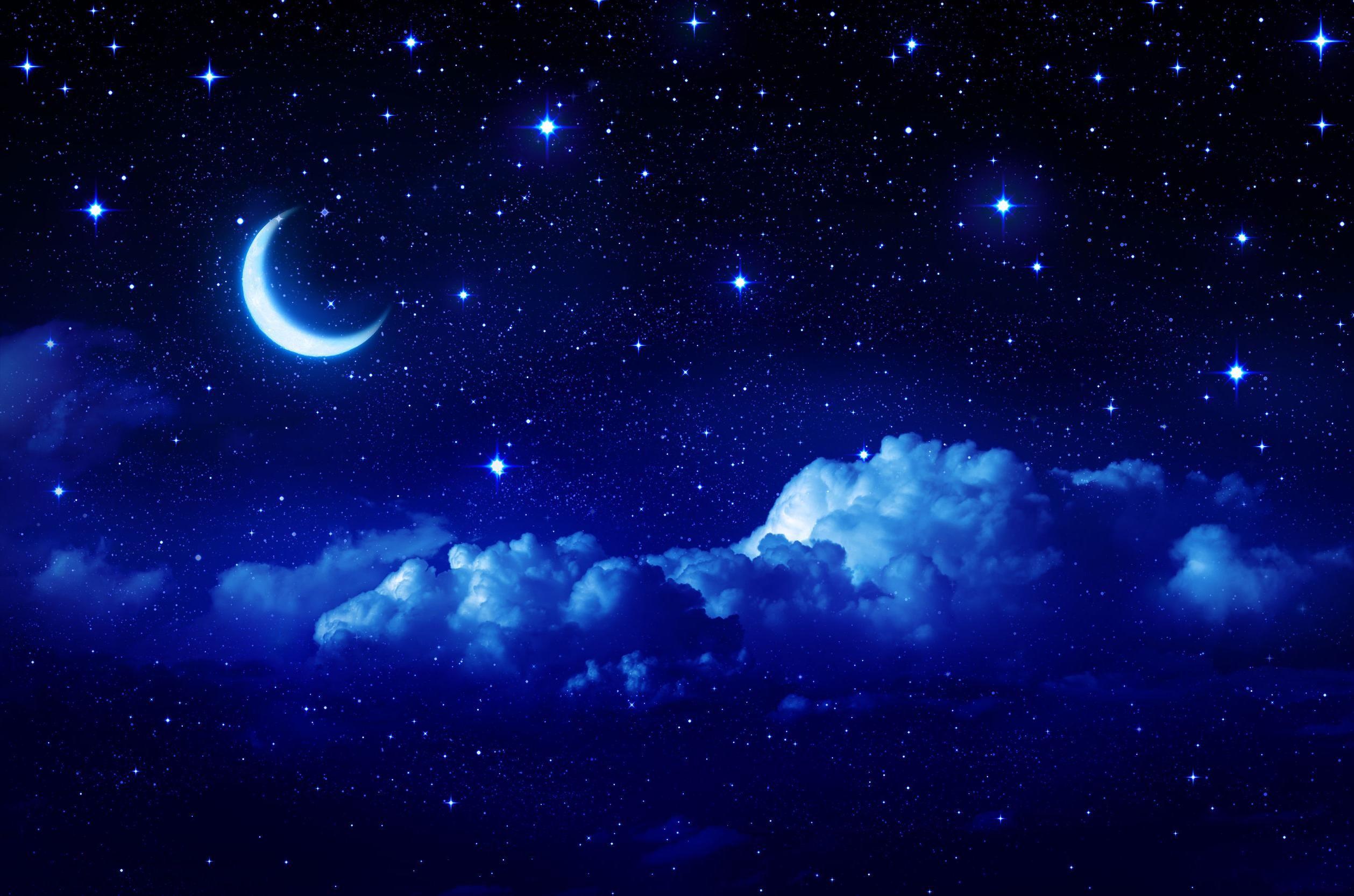 NightClan (Midnightstar)