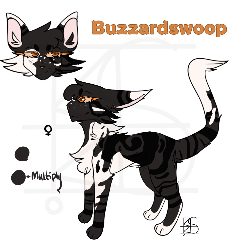 Buzzardswoop
