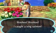 King salmon new leaf 2