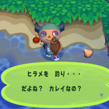 Olive Flounder Animal Crossing Wiki Fandom Her nle için anında hazır 4k ve hd video. olive flounder animal crossing wiki