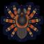NH-Icon-tarantula.png
