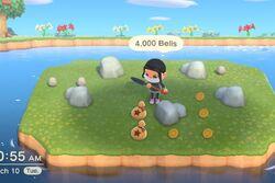 Newhorizons money island.jpg