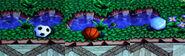 Dung beetle ball balls animal forest e