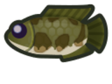 Guide:July fish list (New Horizons)