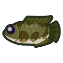 July fish list (New Horizons)