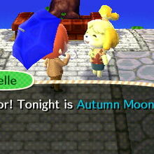 Meeting With Autumn Moon Isabelle.jpg