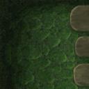 Flooring mossy carpet