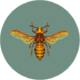 Bee (City Folk).png