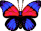 Agrias Butterfly (City Folk texture).png