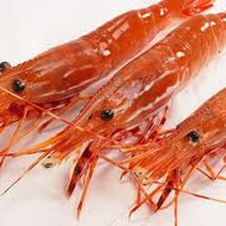 Real sweet shrimp.jpg