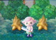 TreeDifferentLeaves