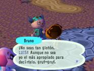 Hablando con Bruno en el Día del Pavo