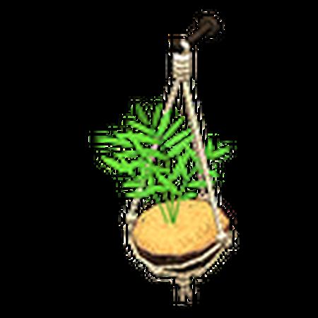 Coconut Wall Planter Animal Crossing Wiki Fandom