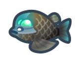 太平洋桶眼魚