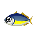 Fish (Pocket Camp)
