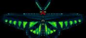 Raja Brooke Butterfly (City Folk texture alt)