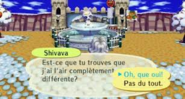 Shivava.