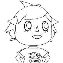 Joueur Animal Crossing Wiki Fandom