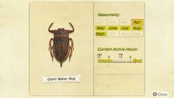 NH-encyclopedia-Giant water bug.jpg