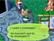 Catching a grasshopper