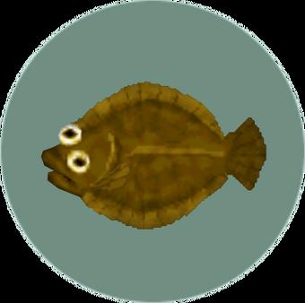 Olive Flounder Animal Crossing Wiki Fandom Sauteed flounder and spicy remoulade. olive flounder animal crossing wiki