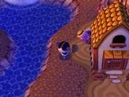 Guindo escondido detrás de una casa