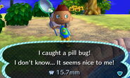 Pill bug new leaf