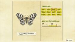 NH-encyclopedia-Paper kite butterfly.jpg