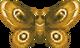 Moth (City Folk texture).png