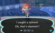 Salmon Caught